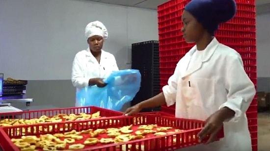 Inhambane coloca fruta no mercado Internacional